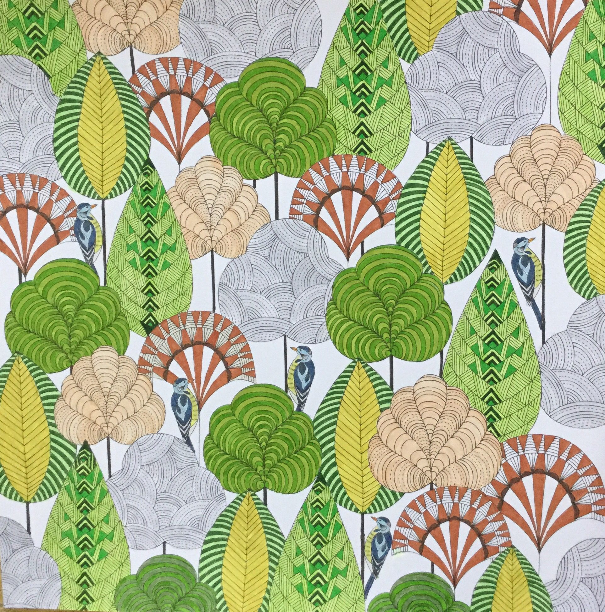 Colouring Millie Marotta Birds Trees / Oiseaux Arbres   Grafika ...