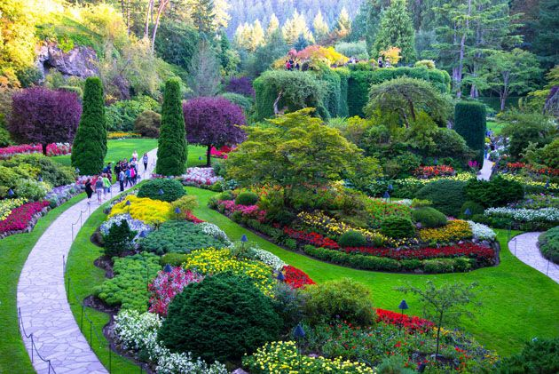 Pin by heidi yang on closer to where i belong in 2019 - Butchart gardens tour from victoria ...