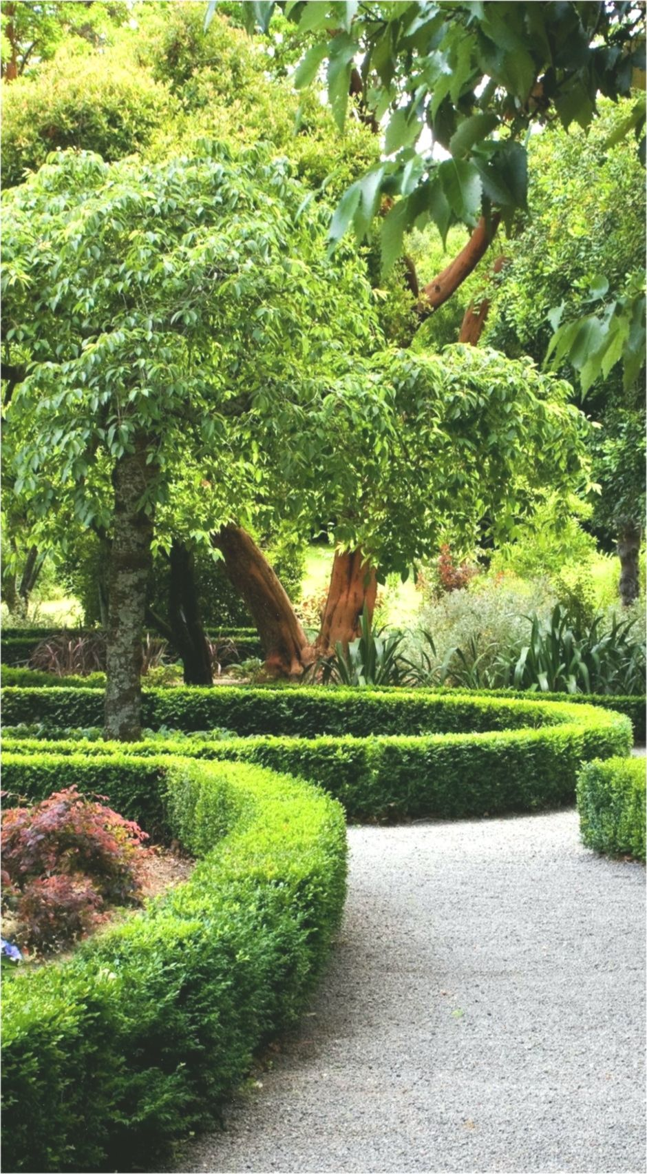 21+ Nice Ideas For Landscaping Design New Zealand That ...