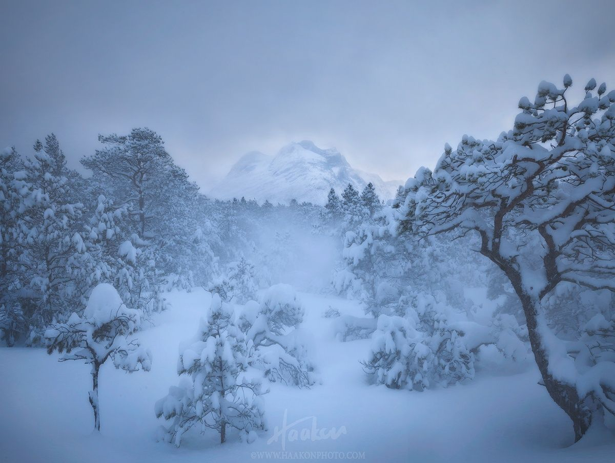 Closing in by Haakon Nygaard on 500px