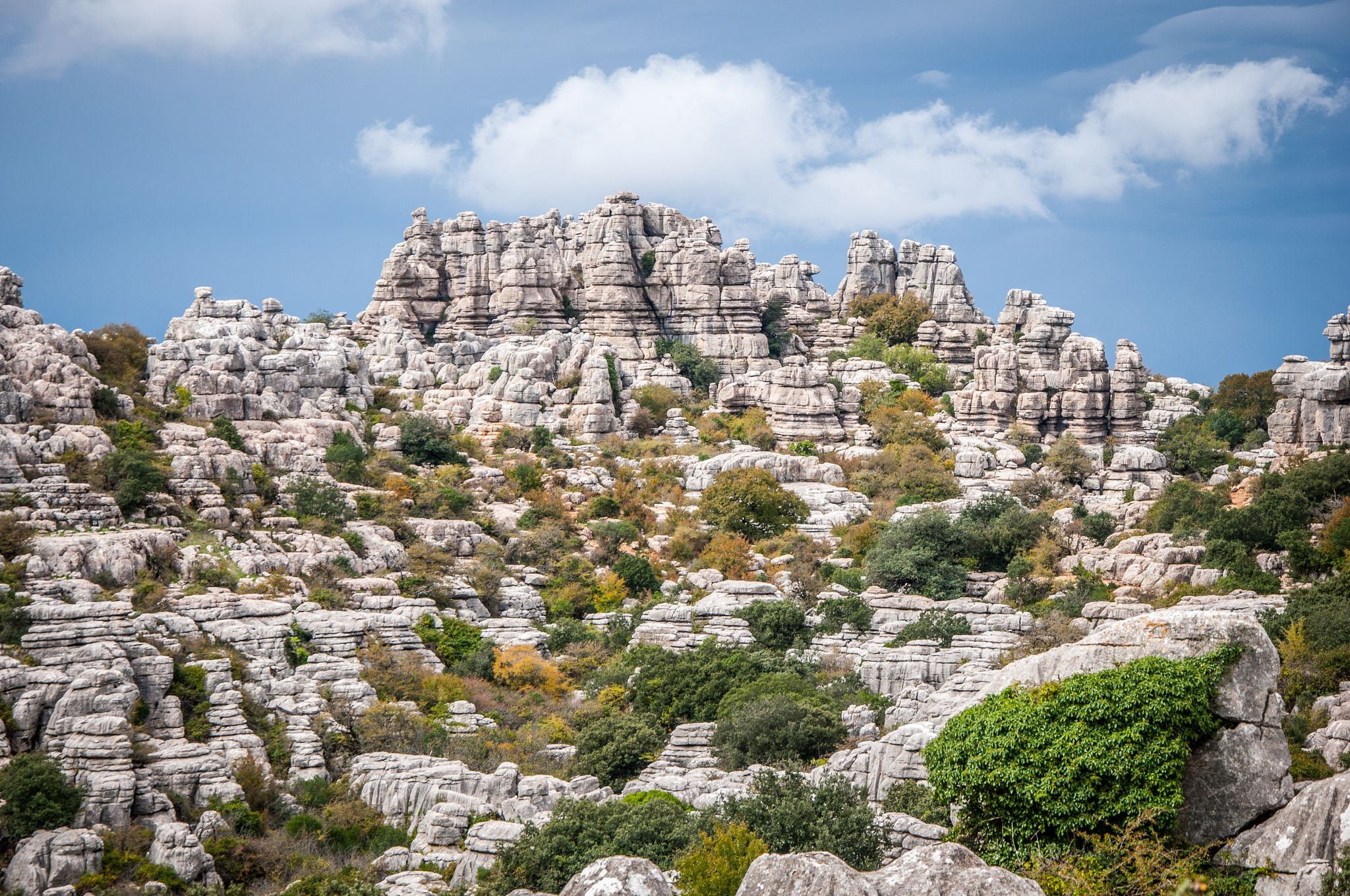 "https://flic.kr/p/AJgw93 | El Torcal, Antequera Spain | Follow me on: 500px | Pinterest | Twitter  Press ""L"" for view on black!  Although during my visit to the El Torcal nature park it was mostly cloudy (See my other photo of El Torcal), for a few minutes the sun appeared. The light gave the rocks a different look, which I happily took advange of.  Details Nikon D90 / Nikor 18-105 VR / ISO 100 / f/8.0 / 18-105mm @ 62mm"