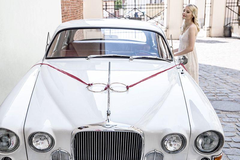 Nieuw Auto Decoratie Kit Wedding Rings Gemaakt Van Rotan En Bloemen Trouwauto Decoraties Auto Decoratie