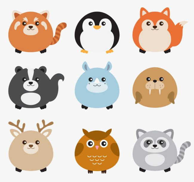 De dibujos animados de colores, Lovely, Ronda, Penguin Imagen PNG ...