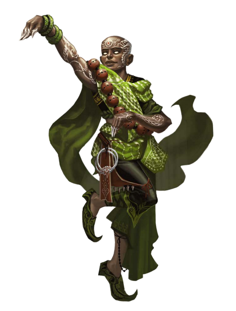 Male Human Snake Monk - Pathfinder PFRPG DND D&D 3.5 5th ...