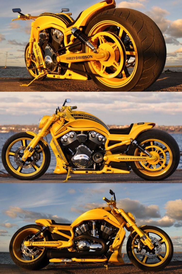 "Harley Davidson V Rod ""Yellow"" by Fredy in 2020   Harley ..."