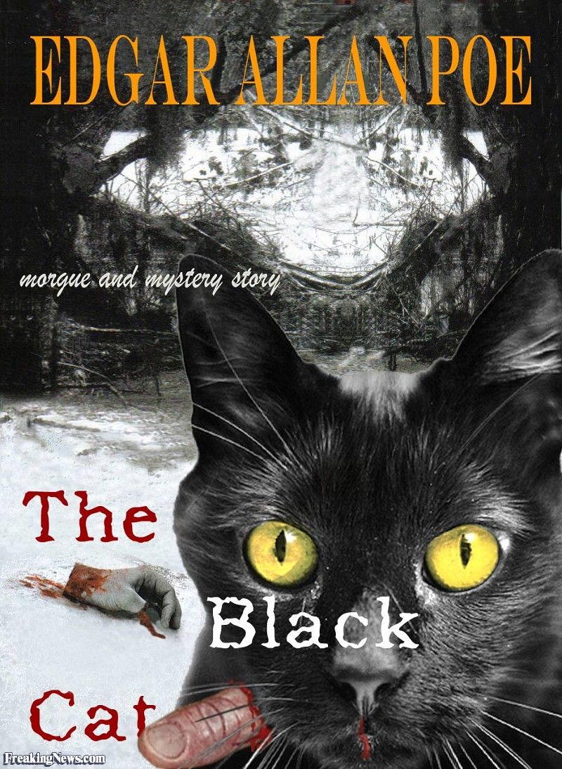 The Black Cat Book Cover To Celebrate The 200th Birthday Of Edgar