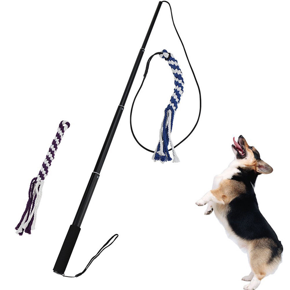 11 45 Outdoor Interactive Dog Toys Extendable Flirt Pole