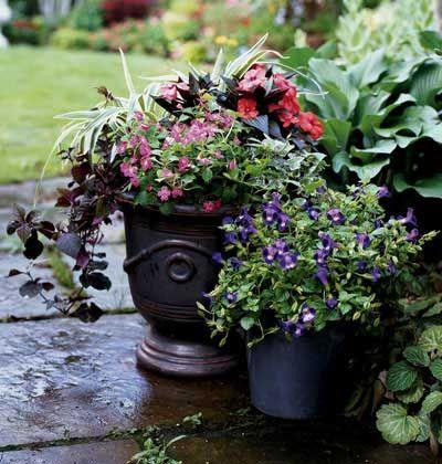 Potted patio plant designs garden designer p allen smith shares his formula for container - P allen smith container gardens ...