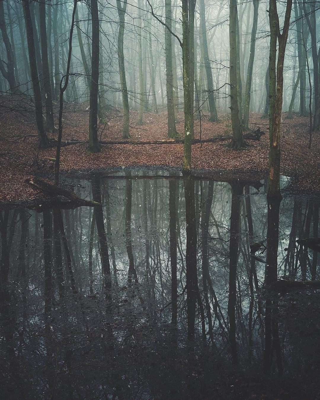 Black Pool Revisited  #jj_mextures #m3xtures #mextures #mellow_mextures #mexturescollective #sombrescapes #sombresociety #soft_vision  #enchantedforest #darkness #beautifuldarkness #grimness  #rsa_dark #pr0ject_uno  #pixelpanda #tree_brilliance #treehugger #tree_captures #tree_magic  #mist_vision #mistyforest #dontgiveafog #foggyshots #mmmdatfog #chasingfog #mist_bestshots #mistyfoggymilkymoody #moodygrams