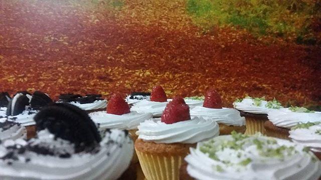 #Cupcakes #oreo #cheesecake #strawberry #lemonpie #cream #vainilla #chocolate #delicious #cute