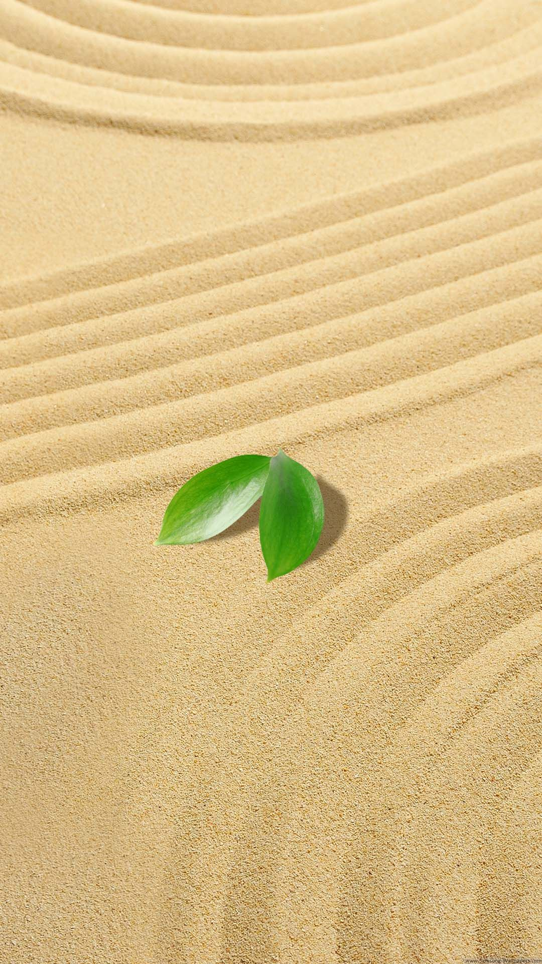 Download Small Green Leaves Sand Iphone 6 Plus Hd Wallpaper