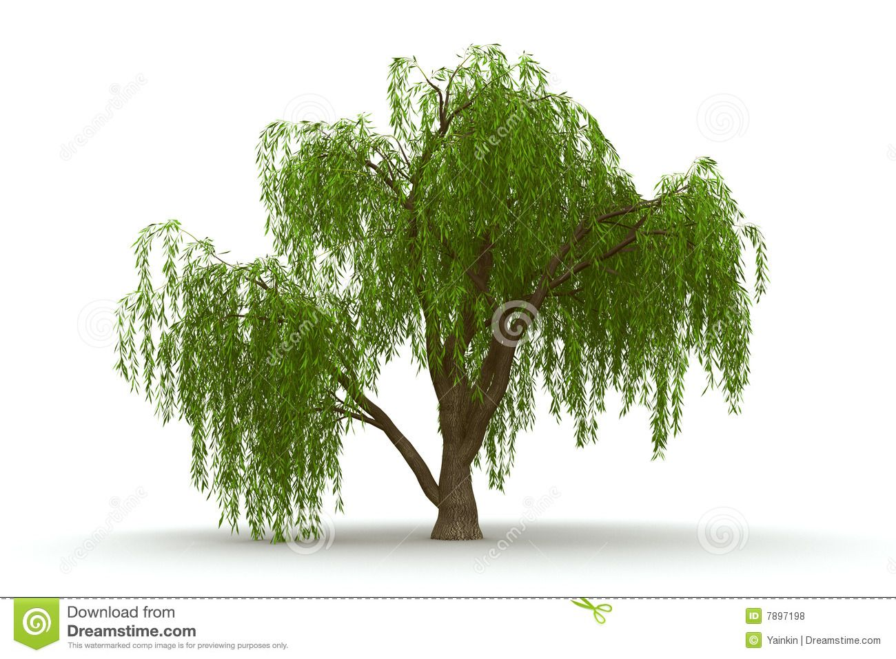 free willow tree logo - Google Search | Ideas for the House ...