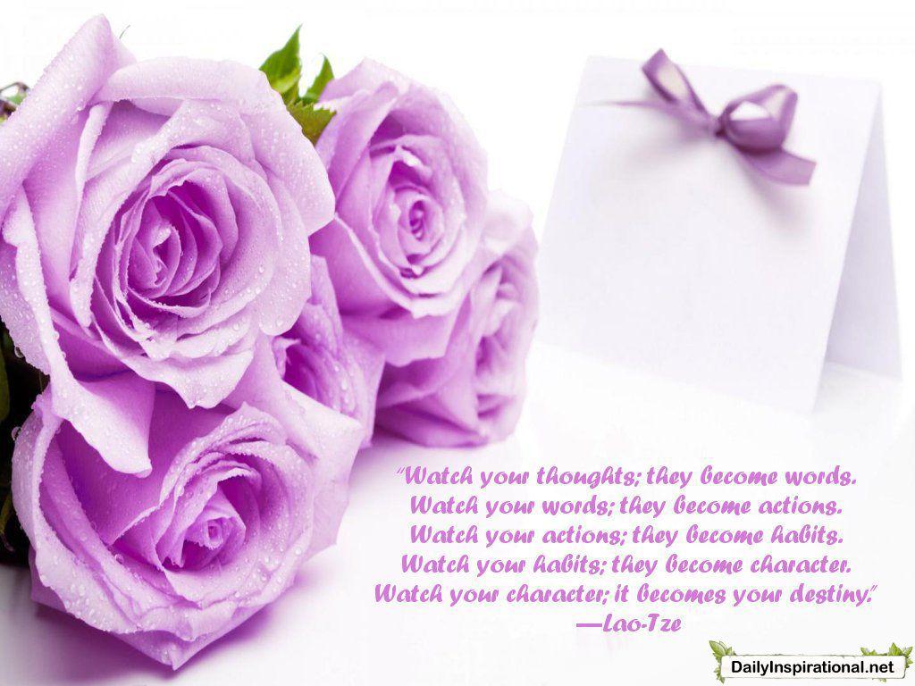 Everyone needs this Happy wedding anniversary wishes