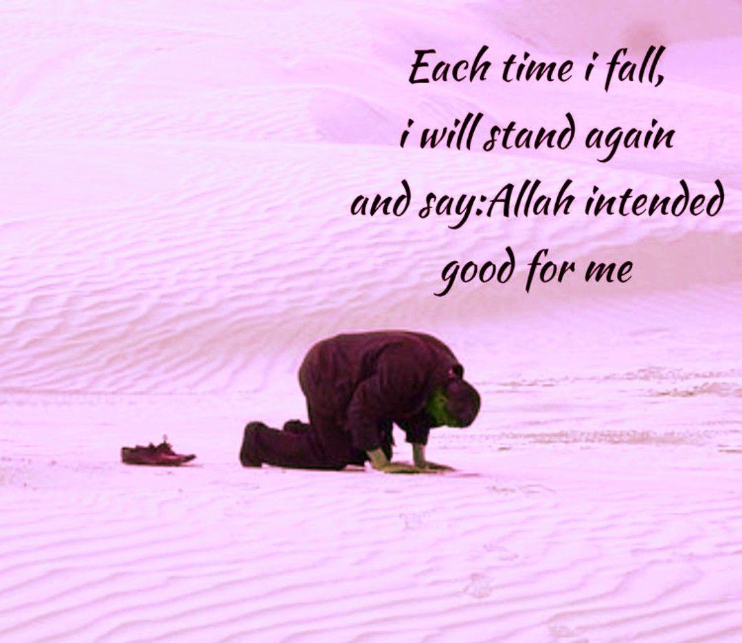 Pin On Islam Way Of Life