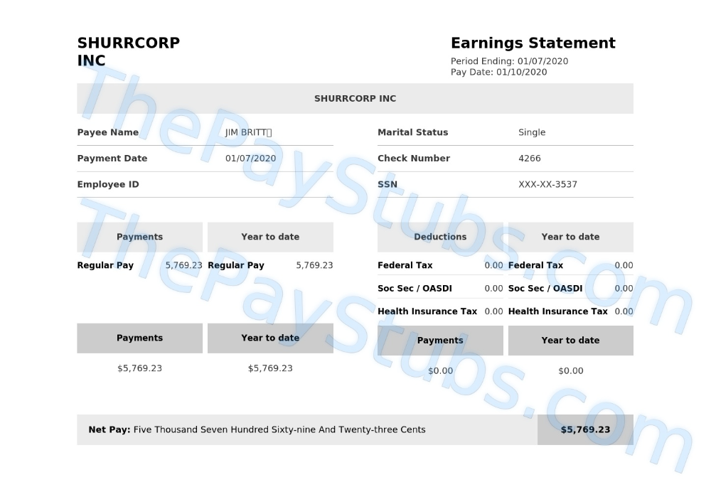 Customize & Review Your Stub The Pay Stubs in 2020