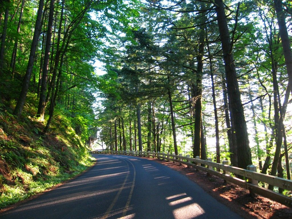 10 Of America S Most Scenic Drives