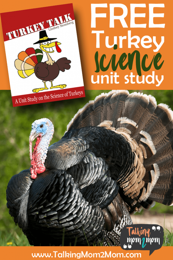 Turkey Science FREE Unit Study - Homeschool Giveaways
