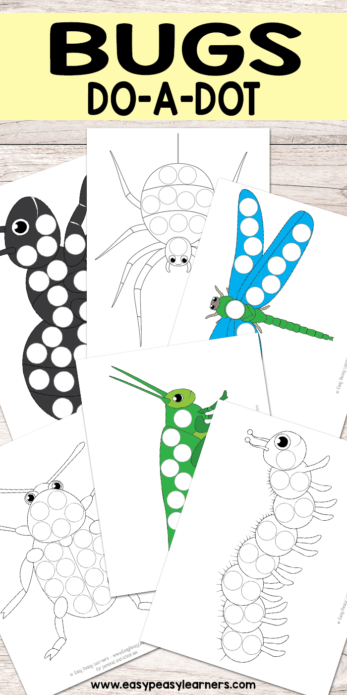 Free Insect Worksheets For Kindergarten
