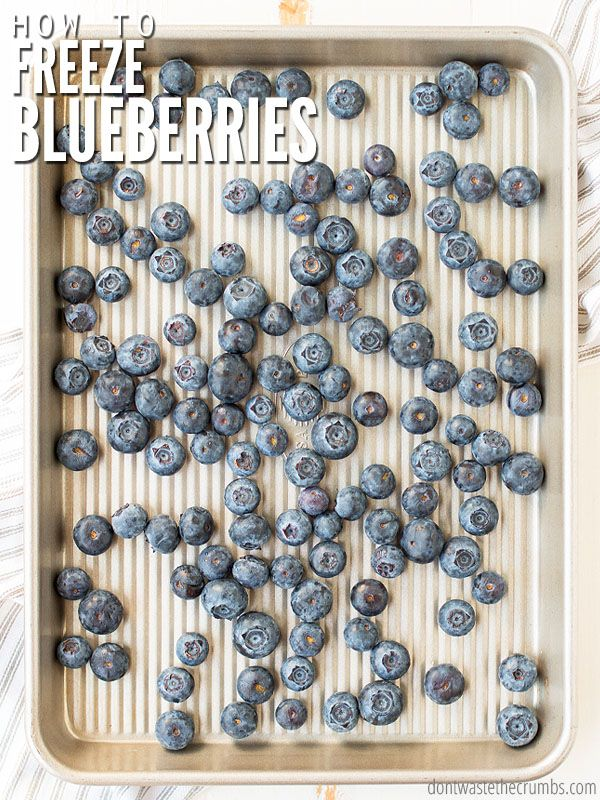 How to Freeze Blueberries (the best and easy method
