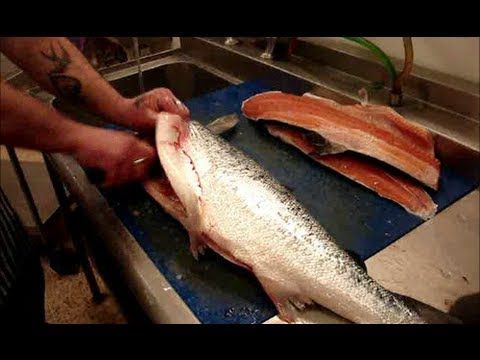 How To Fillet Salmon Into Salmon Sides Fillets Quickly Salmon Sides Fillet Salmon