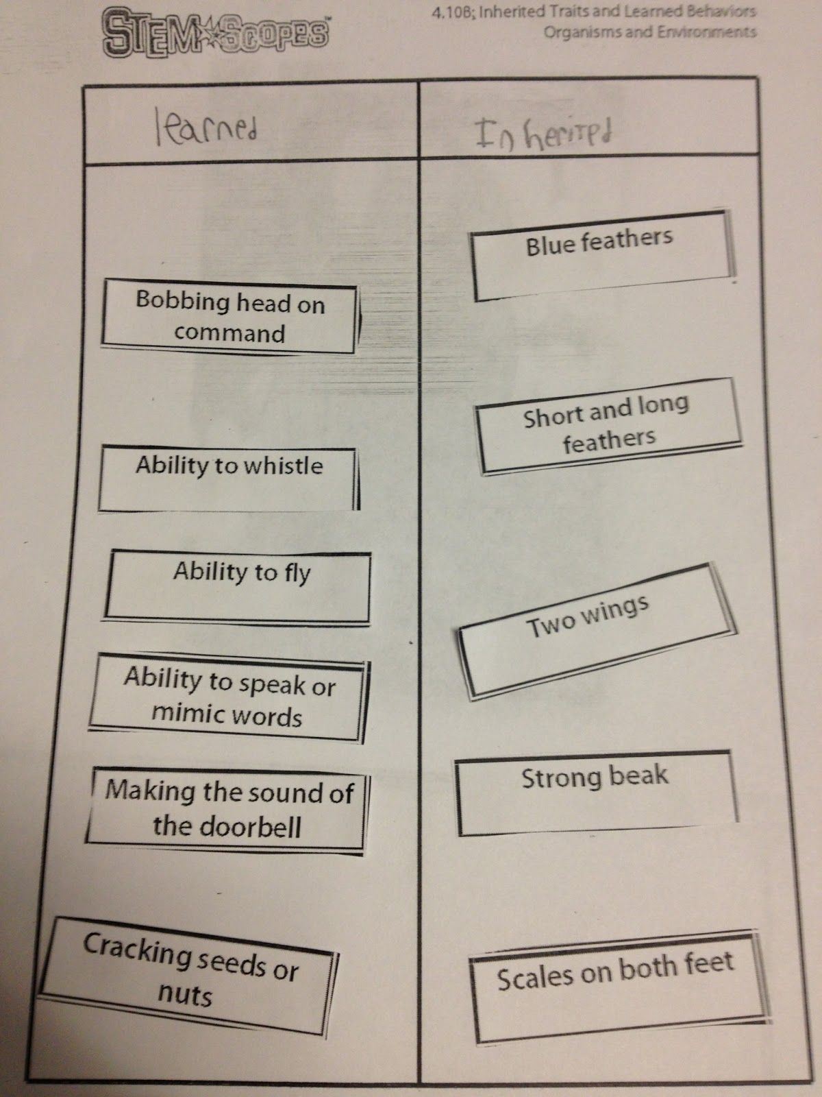 Worksheets Inherited Traits Worksheet the 4th grade may niacs inherited traits and learned characteristics