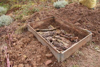 buches de bois dans carr de permaculture potager - Jardin En Carre Bois