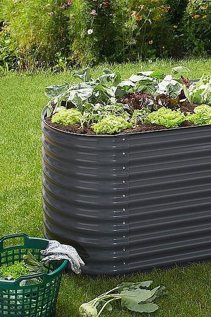 Konifera Hochbeet Bxtxh 240x80x82 Cm Online Kaufen Baur Hochbeet Gartenbau Gardening