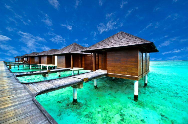 26 صورة ستجعلك ترغب السفر إلى جزر المالديف Caribbean Vacations Months In A Year Vacation