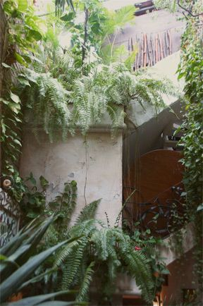 The Weaver House // Kelty & Hannah