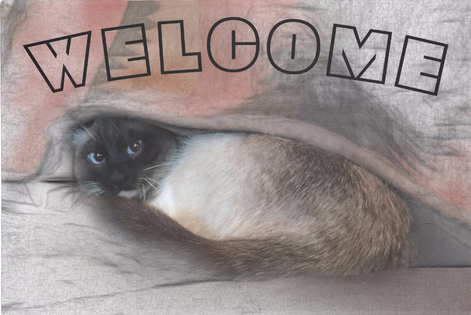 Cute Blue Eyed Siamese Cat Under Blanket Doormat