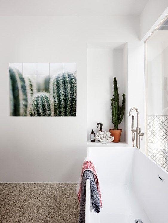 Mareike Boehmer Ixxi Boer Staphorst Badkamer Dubbelzijdig Wanddecoratie Stijlen Interieur Cactussen Groen Bekijk Meer O Badkamer Interieur Thuis