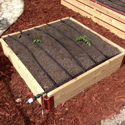 """2""""x12"""" Cedar Raised Garden Bed (4x4 Kit)"""