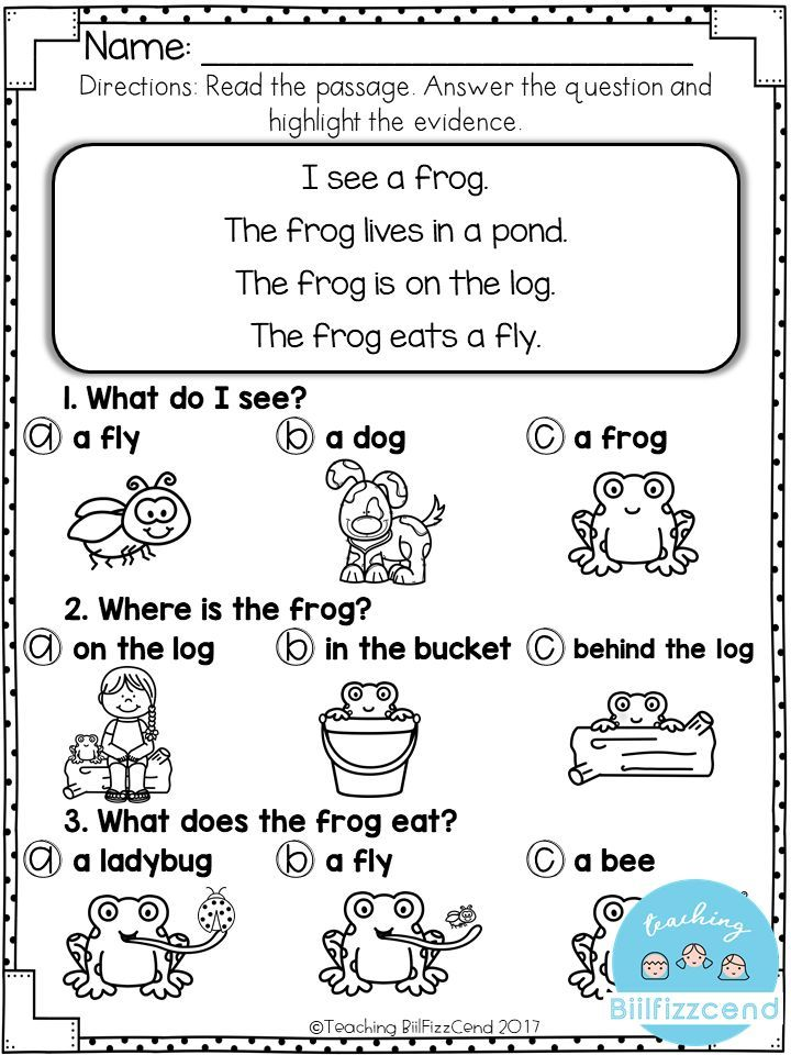 FREE Reading Comprehension For Early Reader Reading