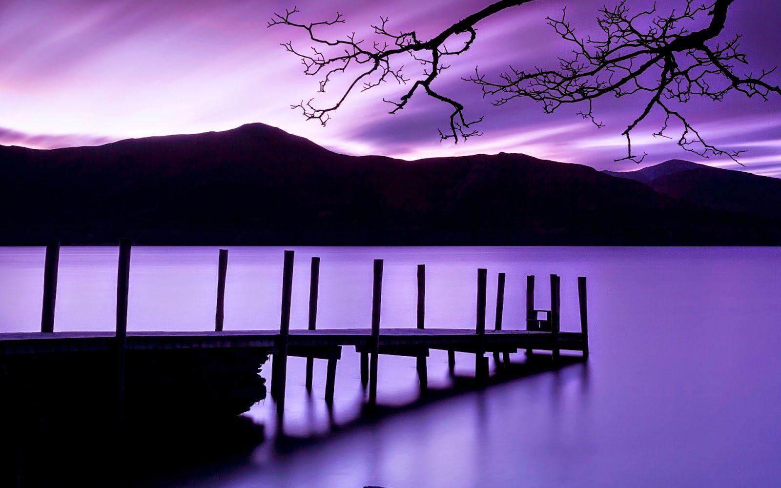 Purple World Hd Wallpaper 1080p Desktop Background Nature Nature Wallpaper Nature Backgrounds