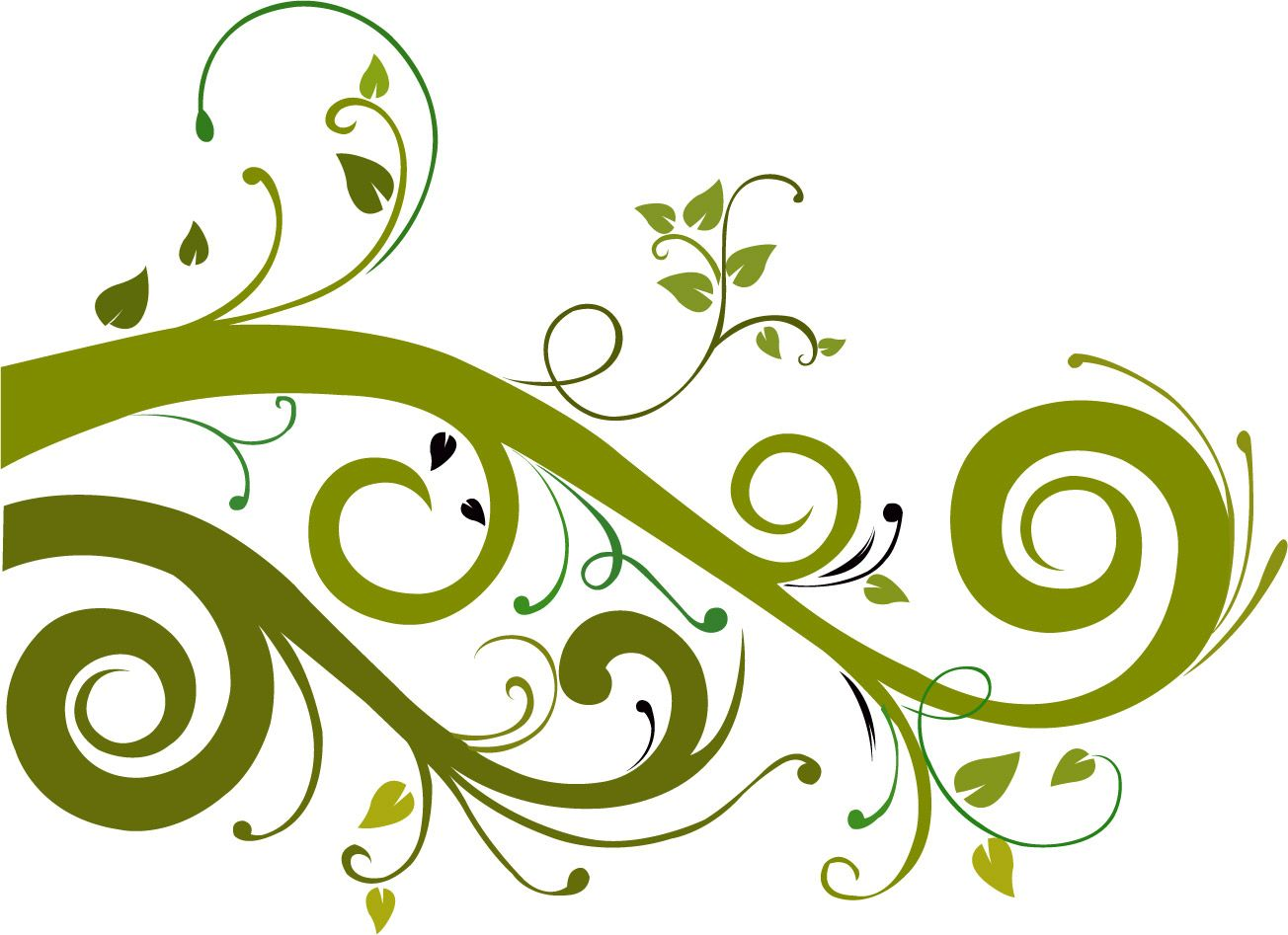 Green floral design vector graphic free vector graphics all free - Flower Vector Graphic 7554 Hd Wallpapers In Vector N Designs