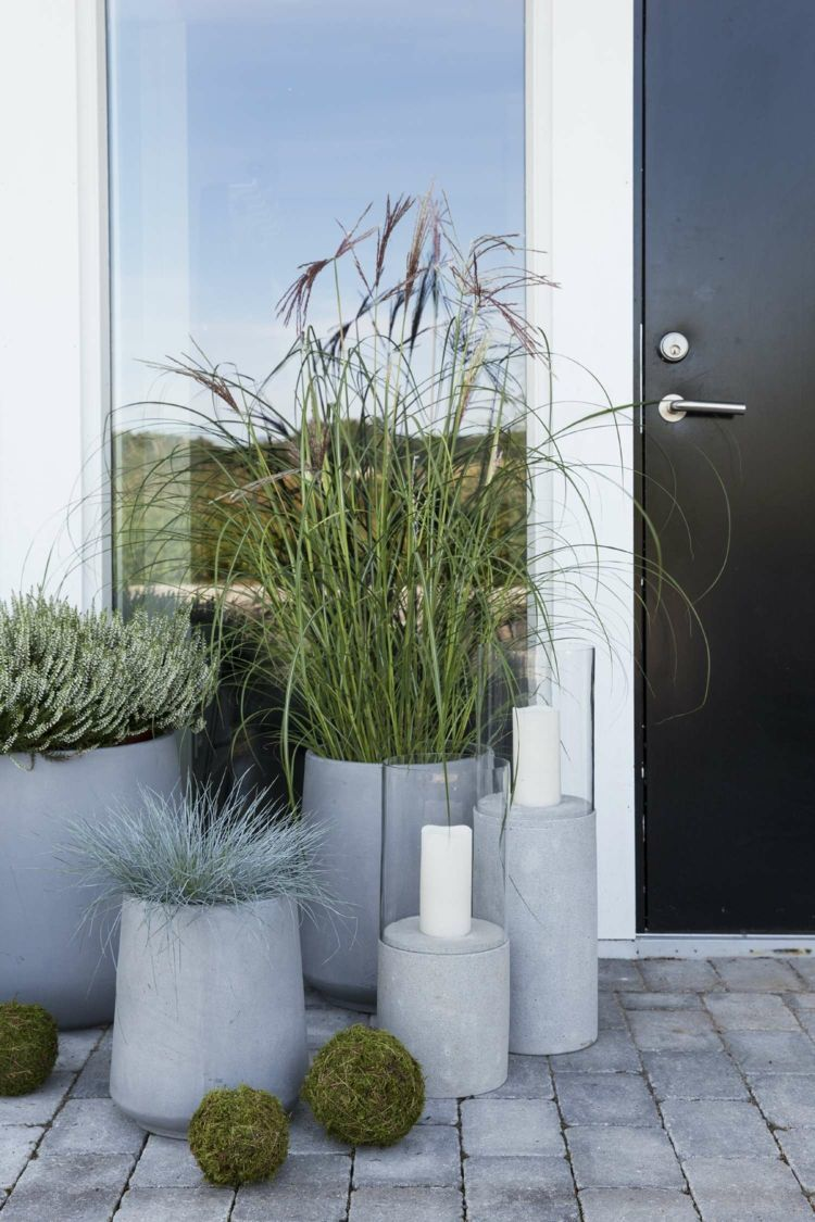 #gartengestaltung gräser #ziergräser blumentopf #beton #minimalistisch #vorgartengärten