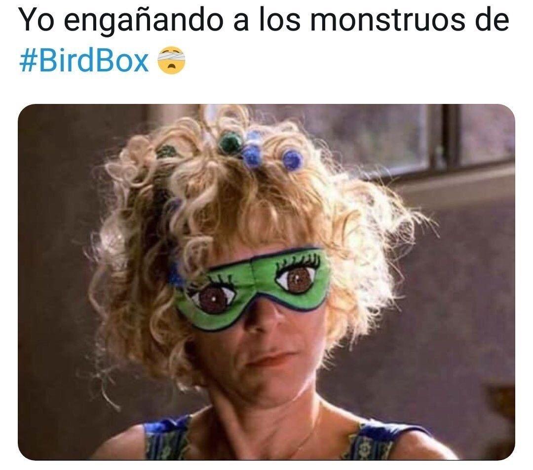21 Memes de Bird Box tan buenos que hasta te quitarías la venda para verlos