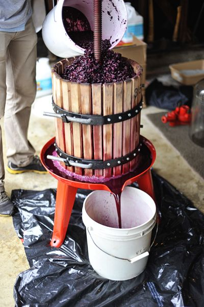 how to make red wine at home pdf