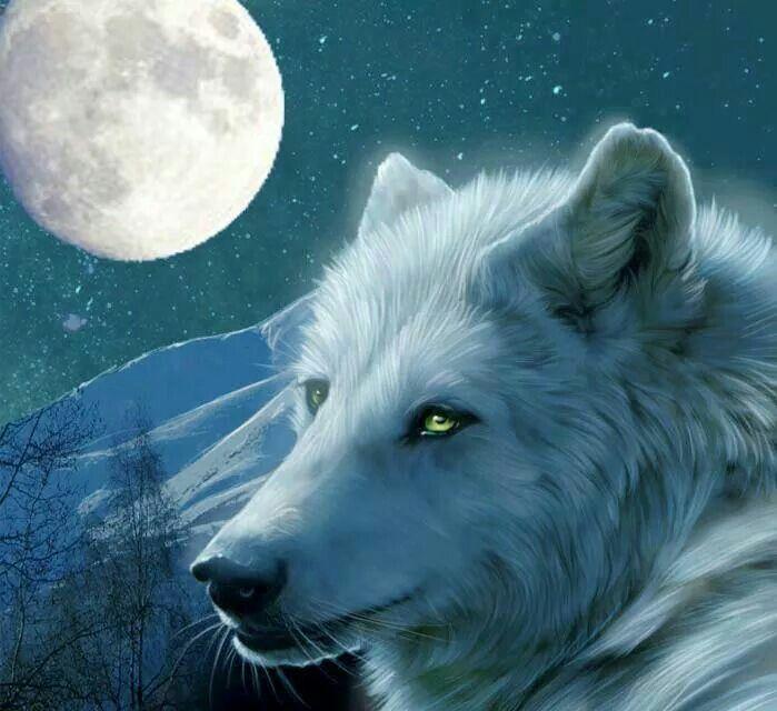 Wolf Spirit My Christmas Dog White Guides