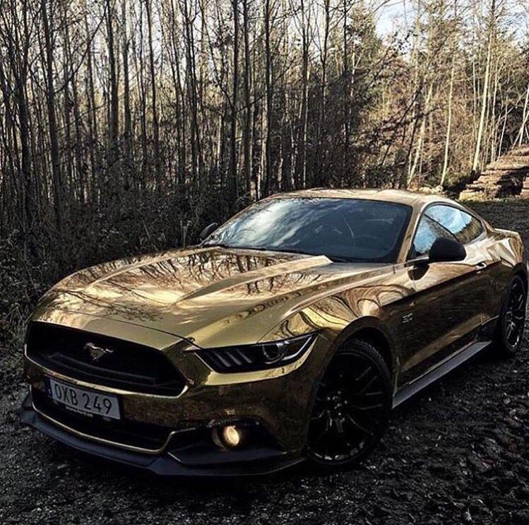 Exotic Car Rental Ford Gt: TheNörwegianPrincess♚