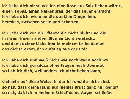 Pablo Neruda No Te Amo Deutsche übersetzung Nelken