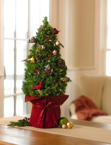 buy a tabletop spruce with birds from gardeners supply this dwarf alberta spruce arrives fully decorated with birds pinecones faux berries and a strand - Fully Decorated Christmas Tree For Sale