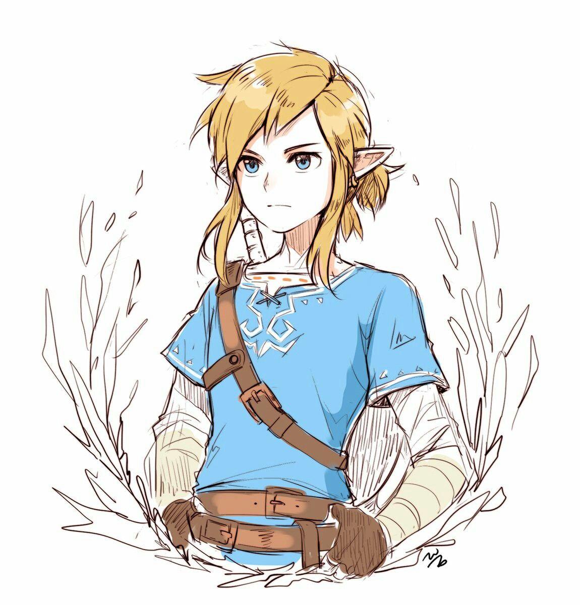 Link Botw Legend Of Zelda Legend Of Zelda Breath Zelda Art