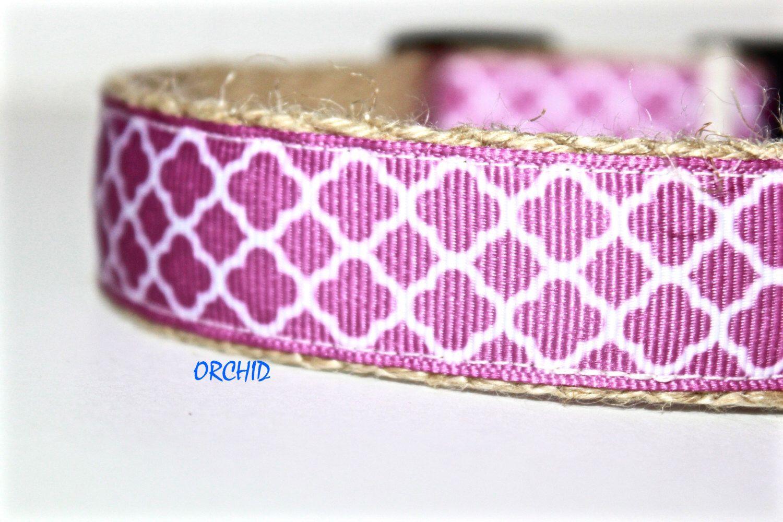 Orchid Dog Collar by GreenBeanDog on Etsy