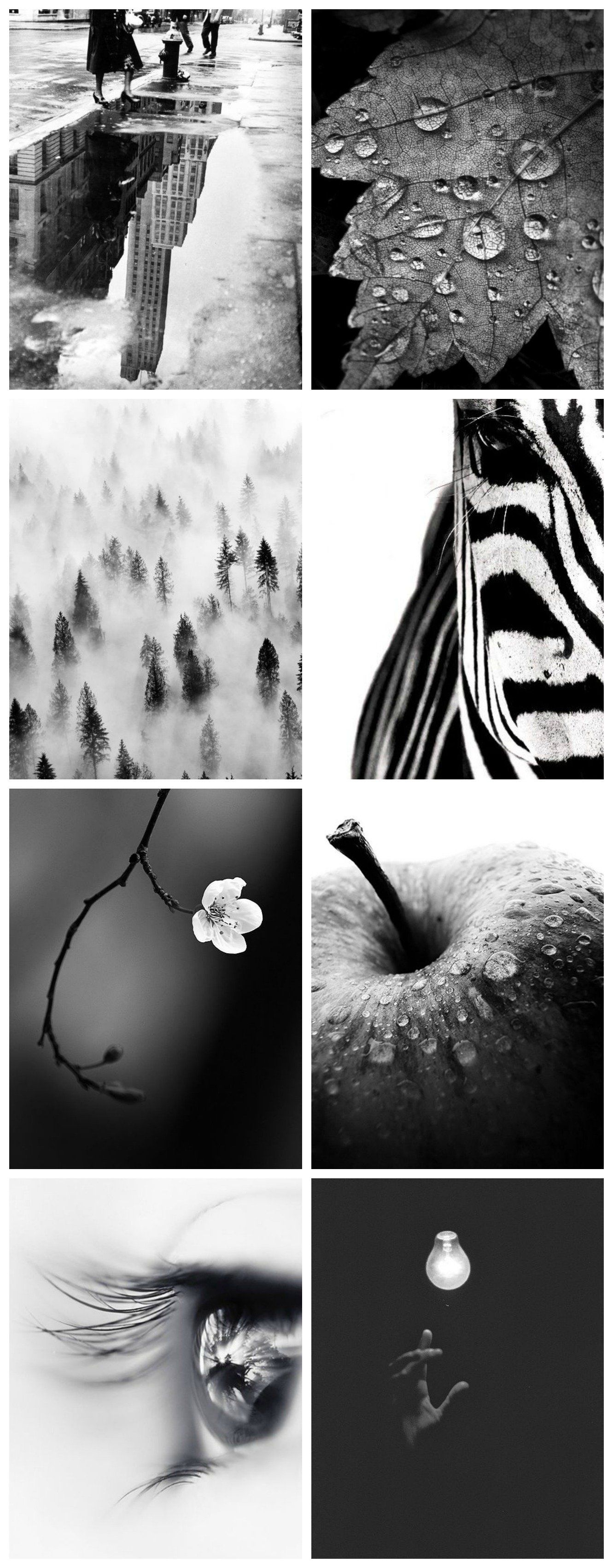 Photography lesson: Tips for mastering black and white photography - Fat Mum Slim