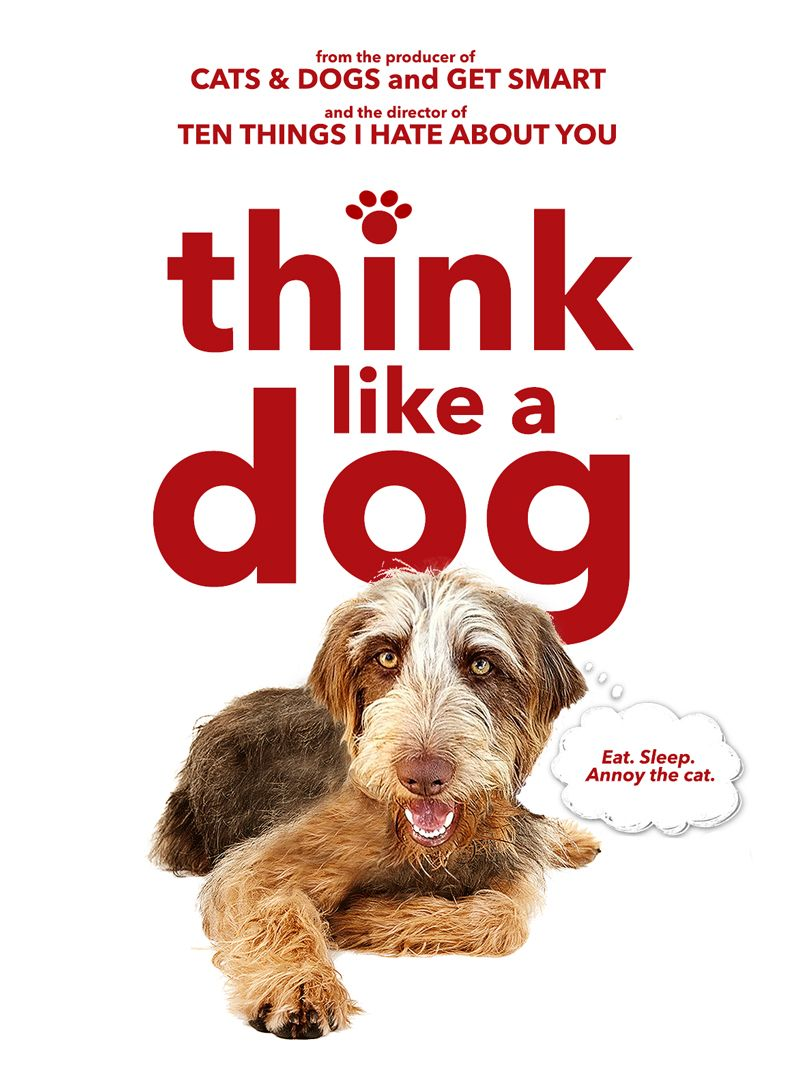 Think Like A Dog Dogs, Annoyed cat, Dog eating