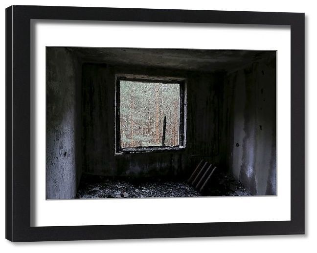 , Framed Print-The Wider Image: Chernobyl – return to Pripyat-22″x18″ Wooden frame with mat made in the USA, My Chernobyl Blog, My Chernobyl Blog