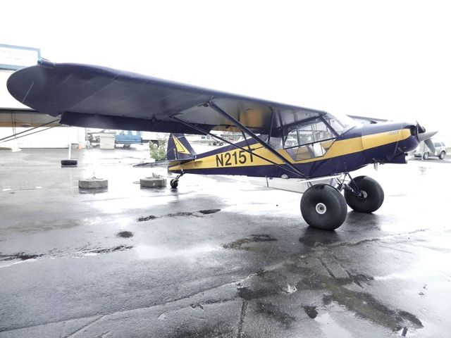 1952 Piper Pa 18 Super Cub On 31 Bushwheels For Sale In