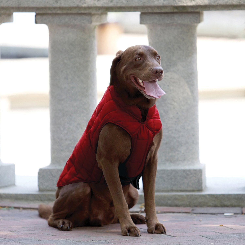 : Amazon.com: Kurgo Chilli Red Outdoor Coat Loft Dog Jacket, X-Large $30