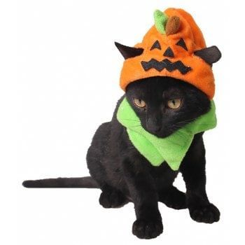 Free shipping 2018 Pet Cat Halloween Decoration Trickper Pumpkin Hat multicolor ...,  Free shipping 2018 Pet Cat Halloween Decoration Trickper Pumpkin Hat multicolor ...,